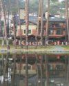Шикарный ВИП коттедж в красивейшем сосновом бору на берегу реки.